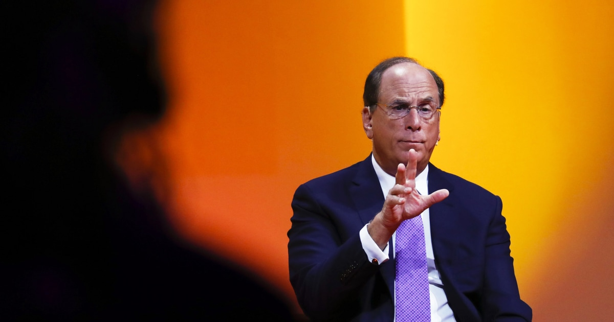 Blackrock makes climate change central to its investment strategy for 2021