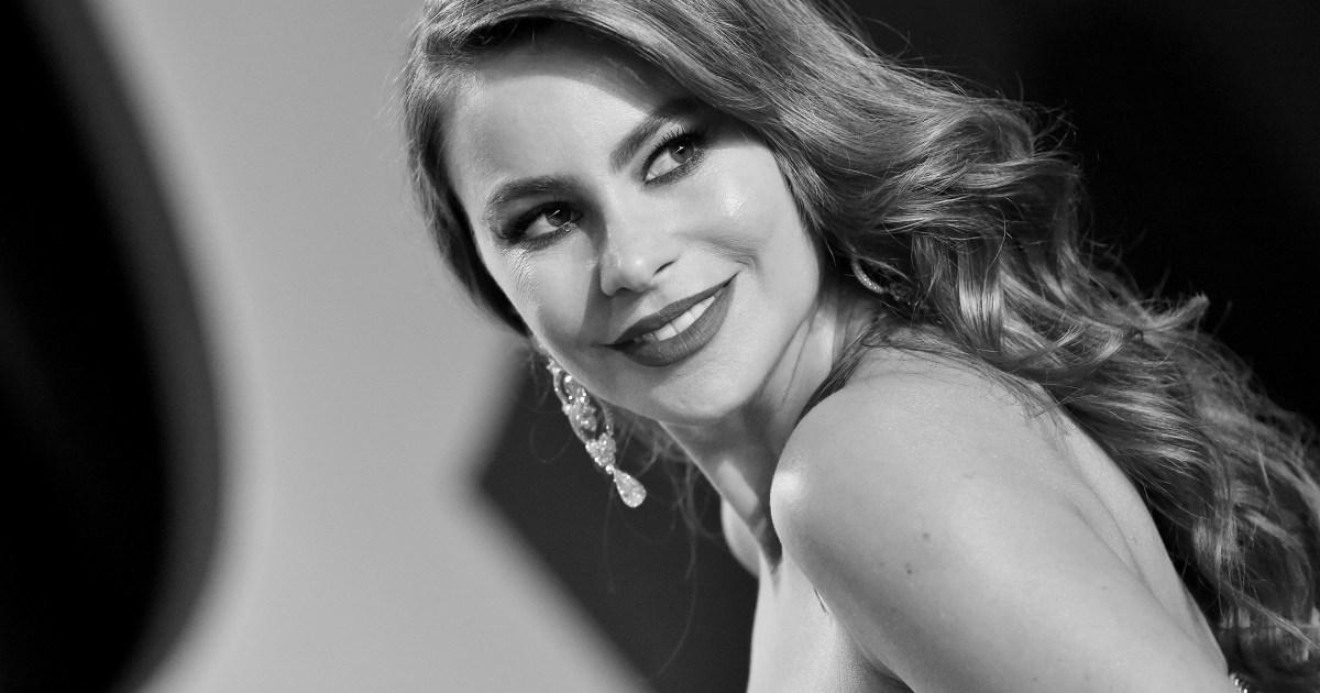 Sofia Vergara: the businesswoman behind a beloved sitcom star