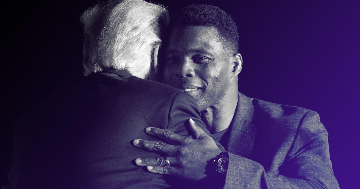 Herschel Walker endorsements from high-ranking Republicans underscore sad truth