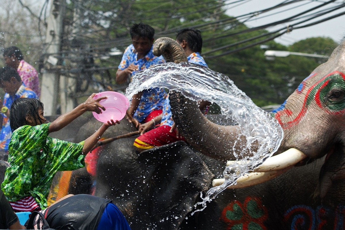 Image: A Thai girl splashes water at an elephant as people celebrate ahead of the Songkran Festival for the Thai New Year in Ayutthaya