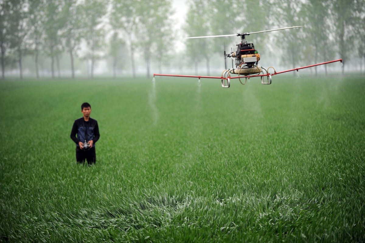 Image: A man uses a drone to spray pesticides on a farm