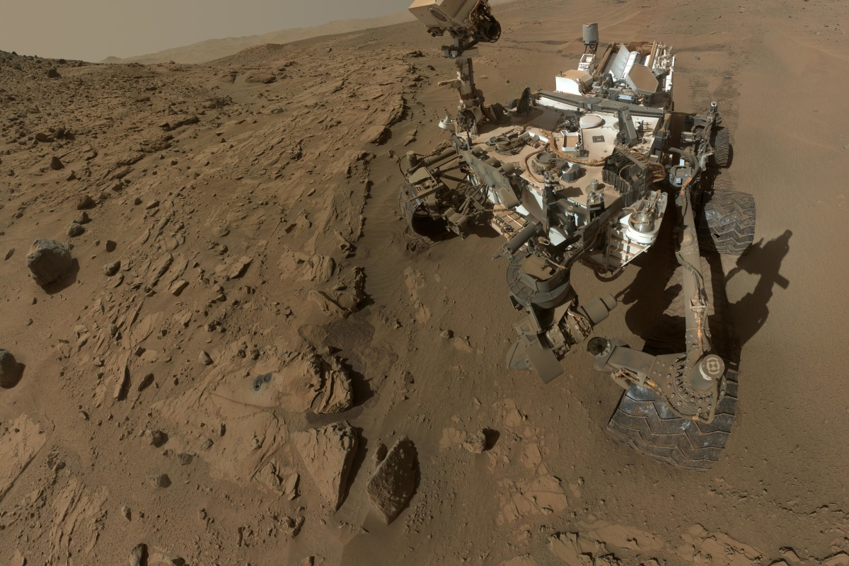 Image: Curiosity self-portrait