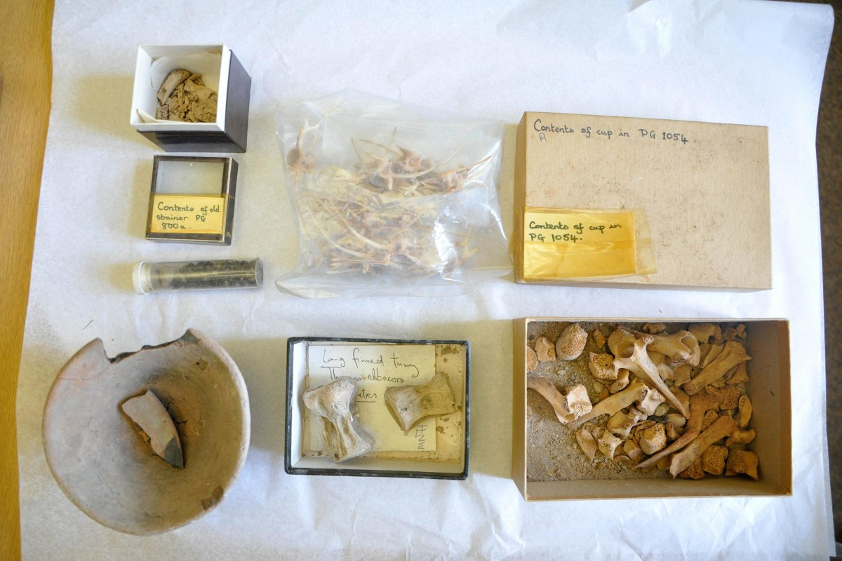 Image: the materials discovered in a box from Sir Leonard Woolley's archaeological dig of the Sumerian city of Ur on display,  in Bristol, England