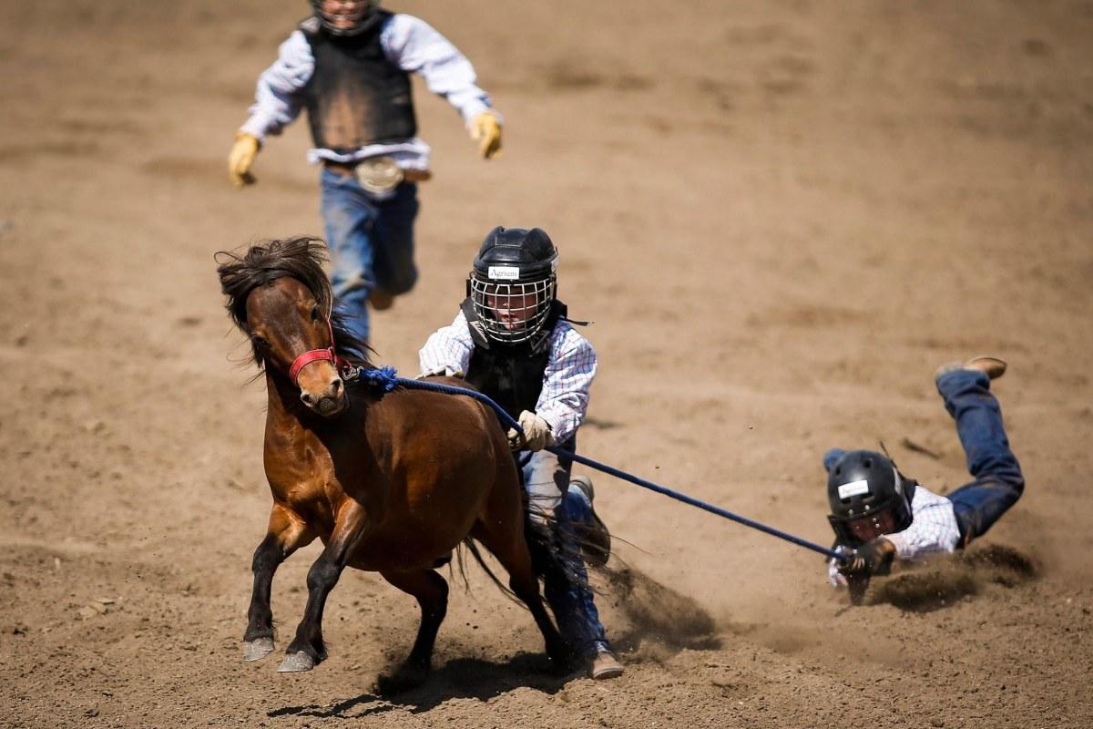 Calgary Stampede Rodeo Kicks Into High Gear Nbc News