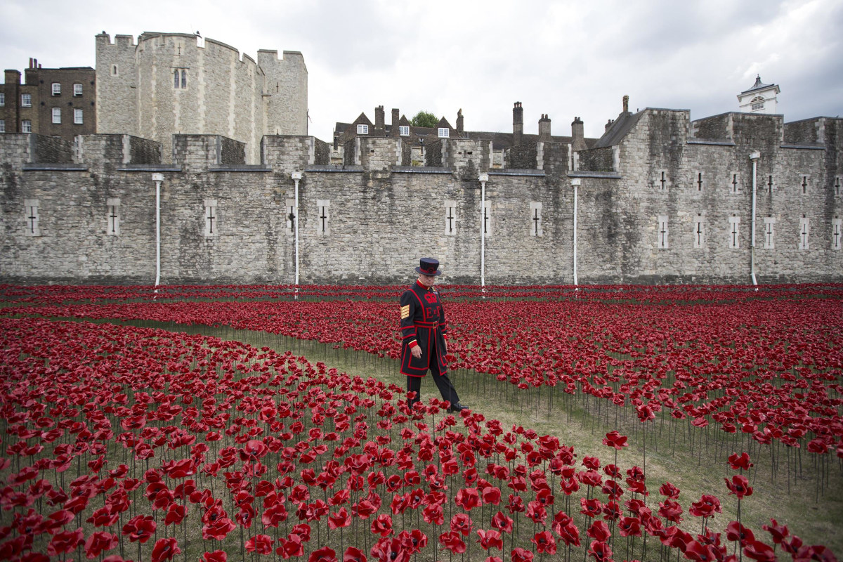 Image: BESTPIX Volunteers Continue To Plant Ceramic Poppies At Tower Of London