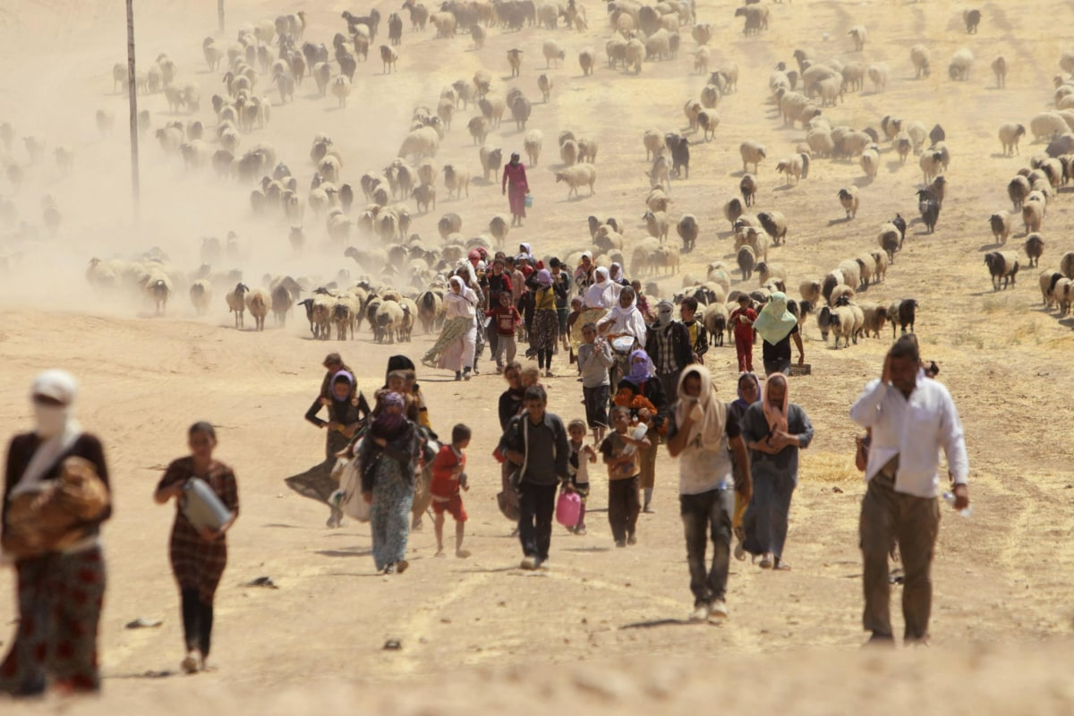 Image: Displaced people from minority Yazidi sect, fleeing violence from forces loyal to Islamic State in Sinjar town, walk towards Syrian border, on outskirts of Sinjar mountain