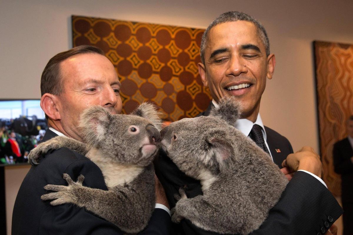 Image: G20 Australia handout photo shows Australia's PM Abbott and U.S. President Obama each holding a koala before the G20 Leaders' Summit in Brisbane