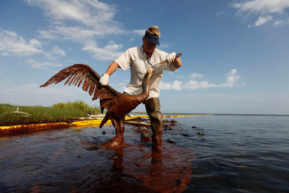the gulf oil spill Almost 90,000 gallons of crude oil gushed from a shell oil facility into the gulf of mexico off the louisiana coast on thursday, leaving a 13- by 2-mile sheen of oil.