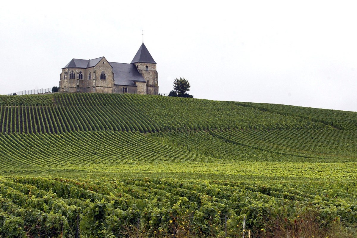 French wine regions champagne burgundy win world heritage for Champagne region in france