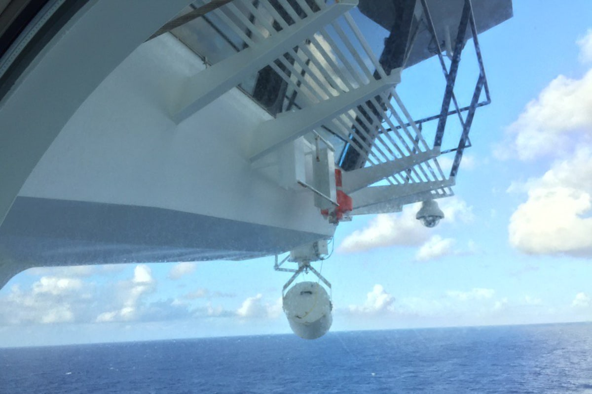 U.S. Coast Guard Searching for Man Who Jumped From Royal ...