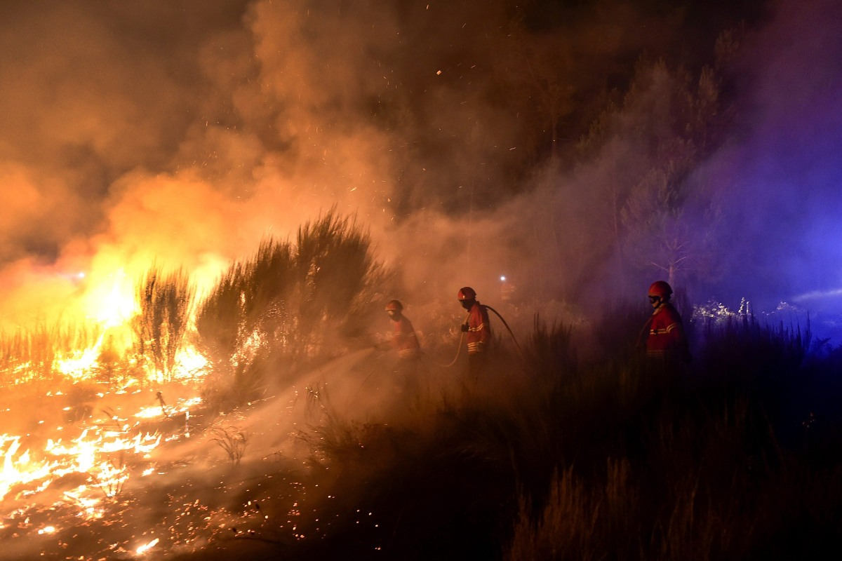 Image: Forest fire in Portuguese Viseu region