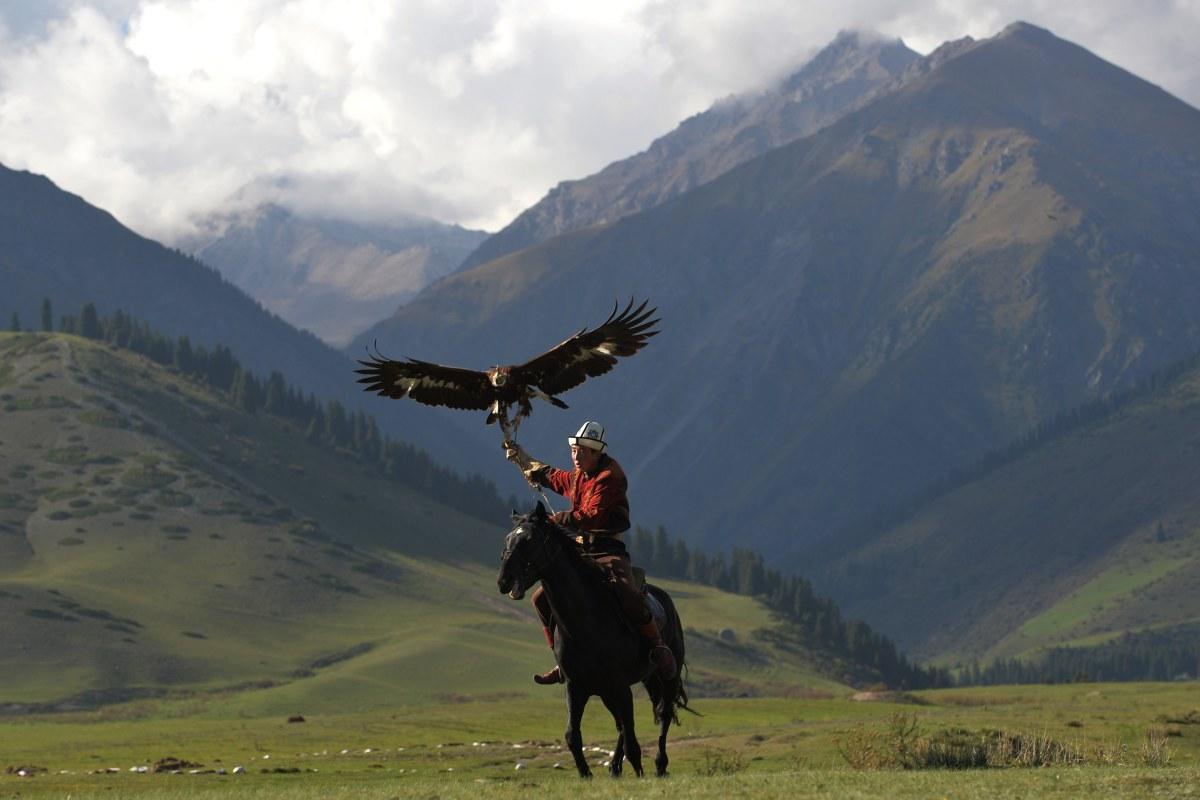 عکسهای شکار عقاب
