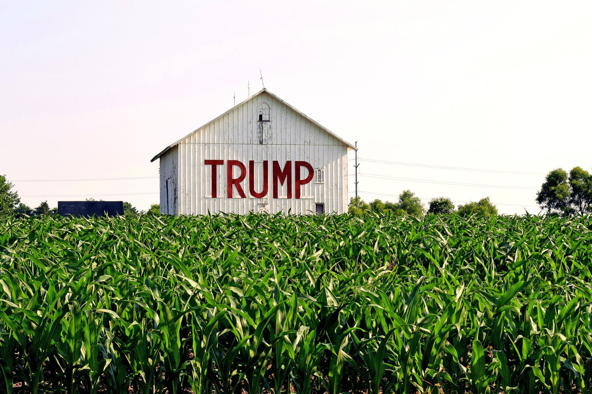 donald trumps barn