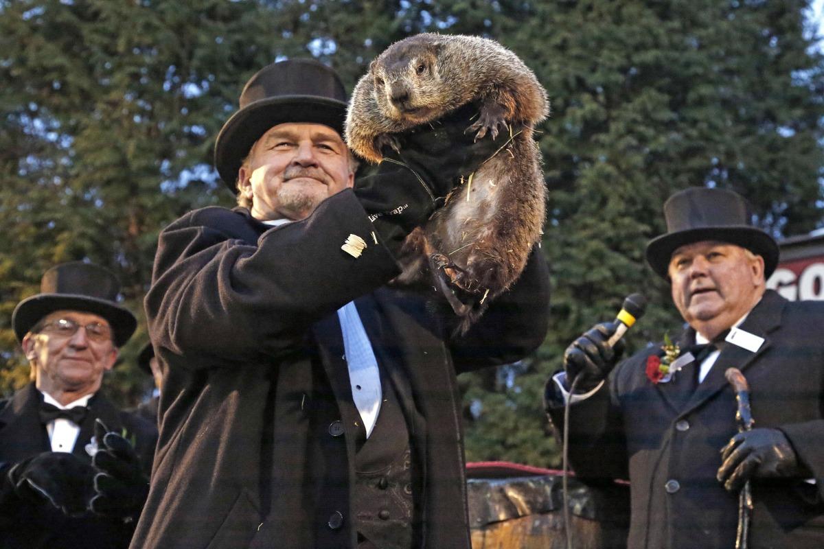 Groundhog Day Spotlights America's Favorite Weather Animal