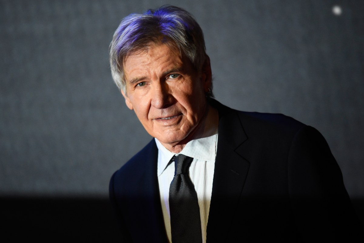 Harrison Ford in Incident With Passenger Plane at ...