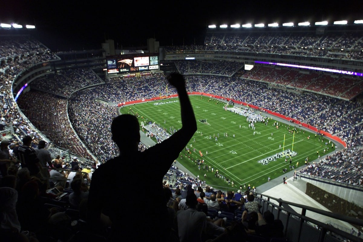 fan identification in professional sports This study also provides further empirical evidence that a fan's level of identification with a  sport journal, 6  loyalty in professional sports:.