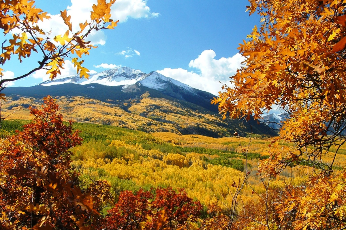 11 best places to see fall colors nbc news for Best small cities to live in colorado