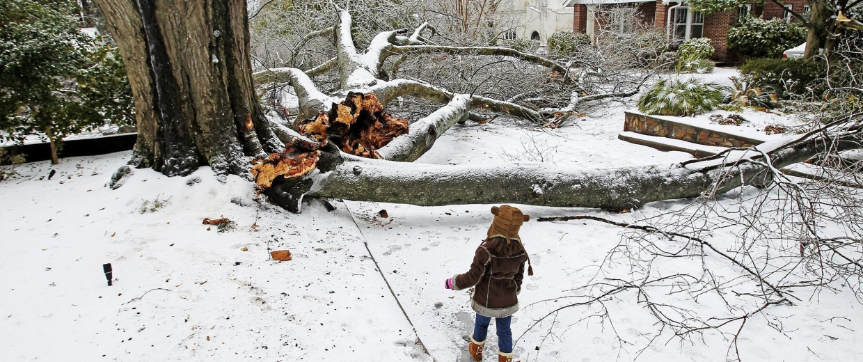 Image: Gaby McDuffie walks by the large limbs that fell off a tree in Columbia, S.C., on Thursday.