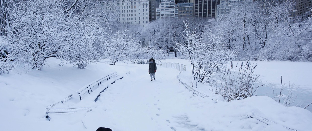 Image: A woman and her dog go for a walk in Central Park on Feb. 14 in New York.
