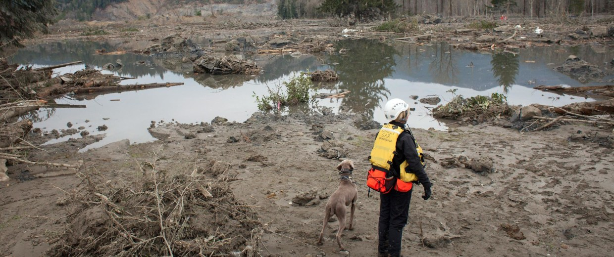 Image: Fourteen Killed, Many Missing After Major Washington State Mudslide