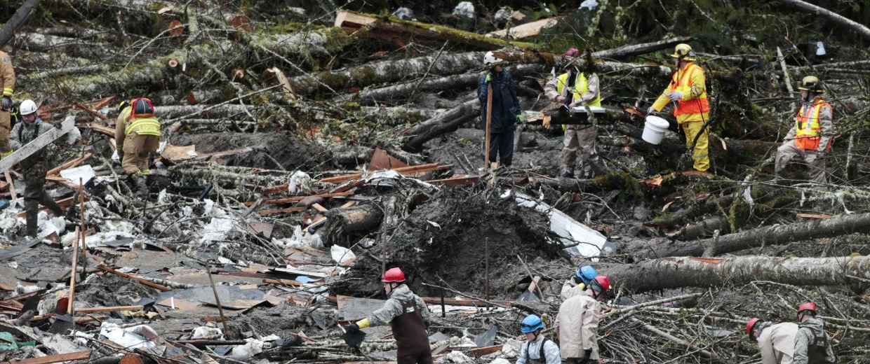 Image: Workers search for victims in a massive mudslide in Oso, Washington