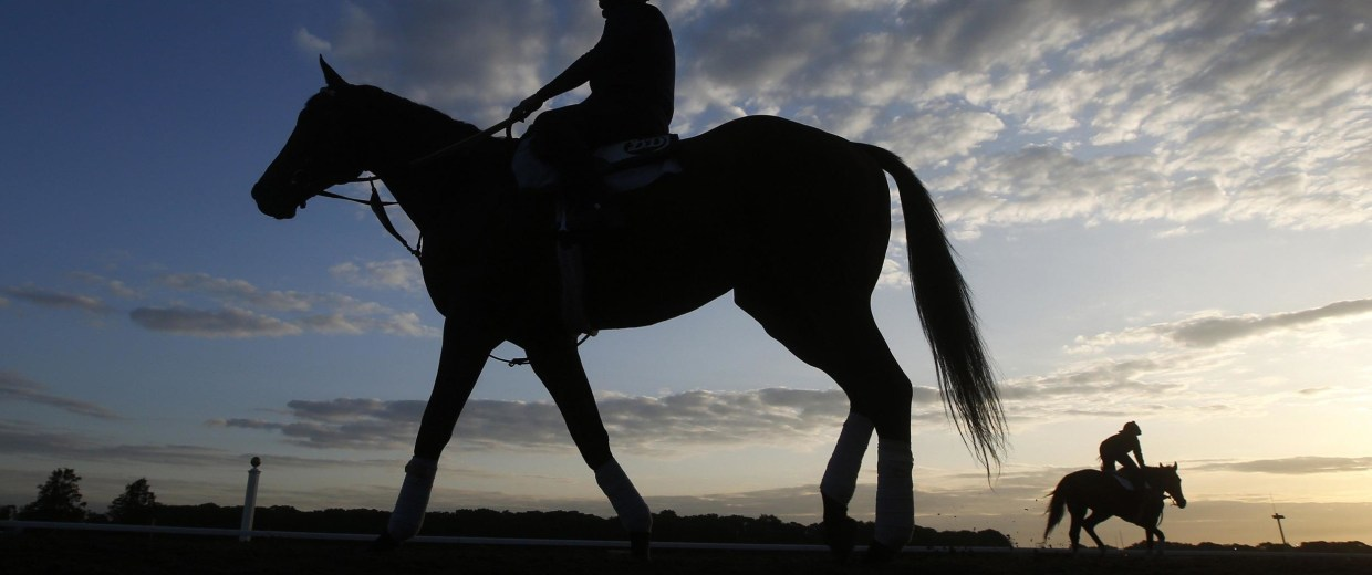 Horses are seen silhouetted during morning workouts at Belmont Park in Elmont, New York, May 30, 2014.