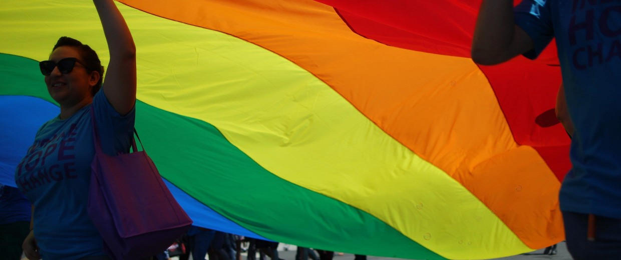Image: Marchers carry a rainbow flag in the LA Pride Parade on June 8