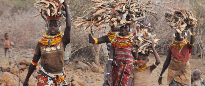 Image: Women gather firewood in Marti Village, Turkana