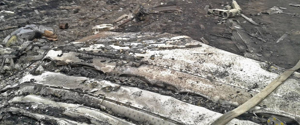 Image: A general view shows the site of a Malaysia Airlines Boeing 777 plane crash in the settlement of Grabovo in the Donetsk region