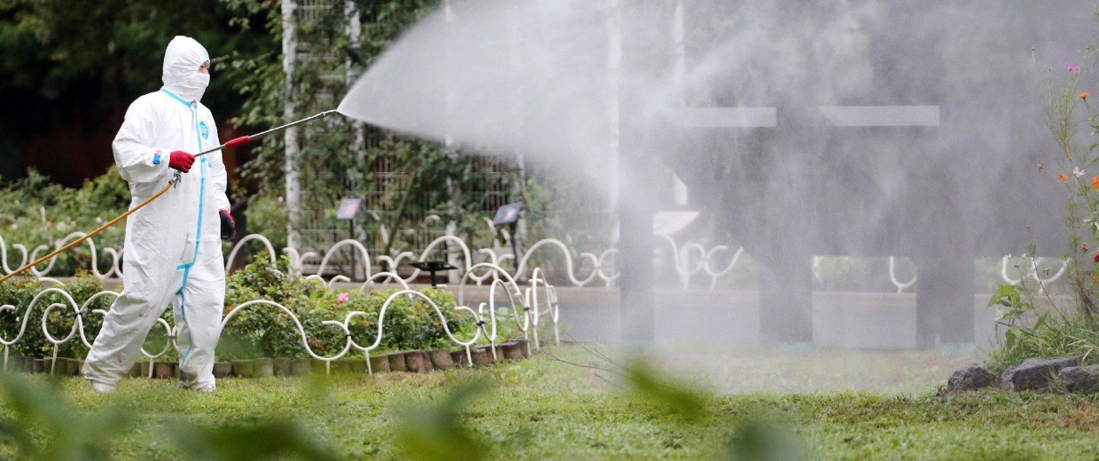 Image: A worker spraying insecticide at the Yoyogi park
