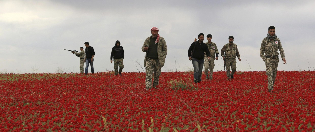 Image: Free Army fighters walk in a field of flowers during a reconnaissance mission on the Heesh front, in Idlib