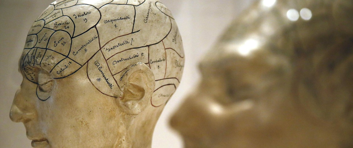 Image: Plaster phrenological models of heads, showing different parts of the brain, are seen at an exhibition at the Wellcome Collection in London