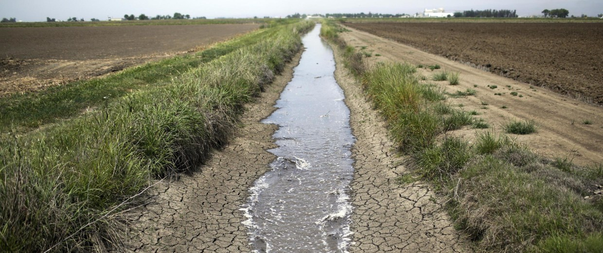 Image: Amid California's worst drought on record, brewers are taking extreme measures to have enough water to make beer.
