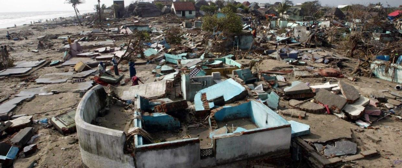 Image: Retrospective of the tsunami