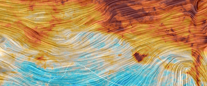 Image: Microwave view of sky