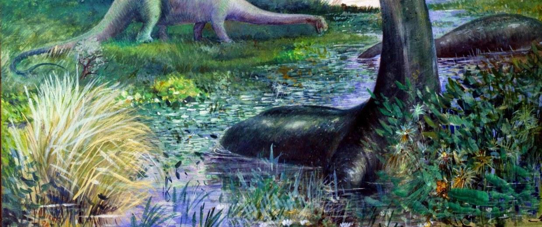 Image: Diplodocus and Brontosaurus