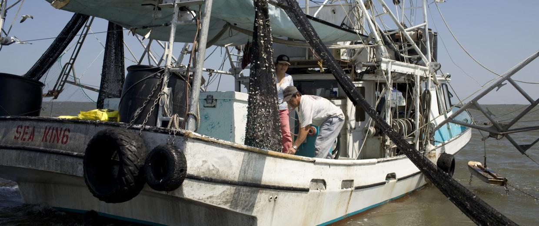 Image: Image: Shrimp fishermen