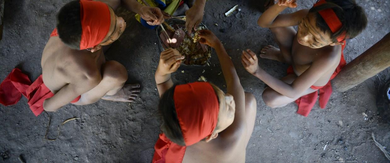 Image: Yanomami