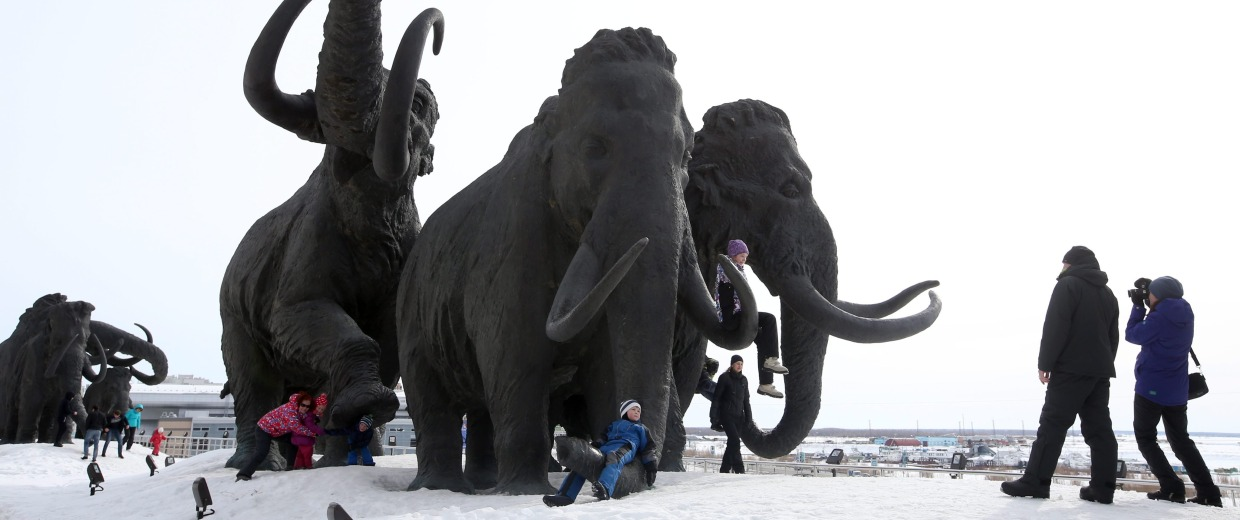 Image: Mammoth sculptures