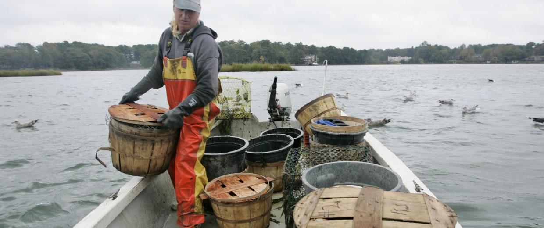Crabbing on the Chesapeake Bay