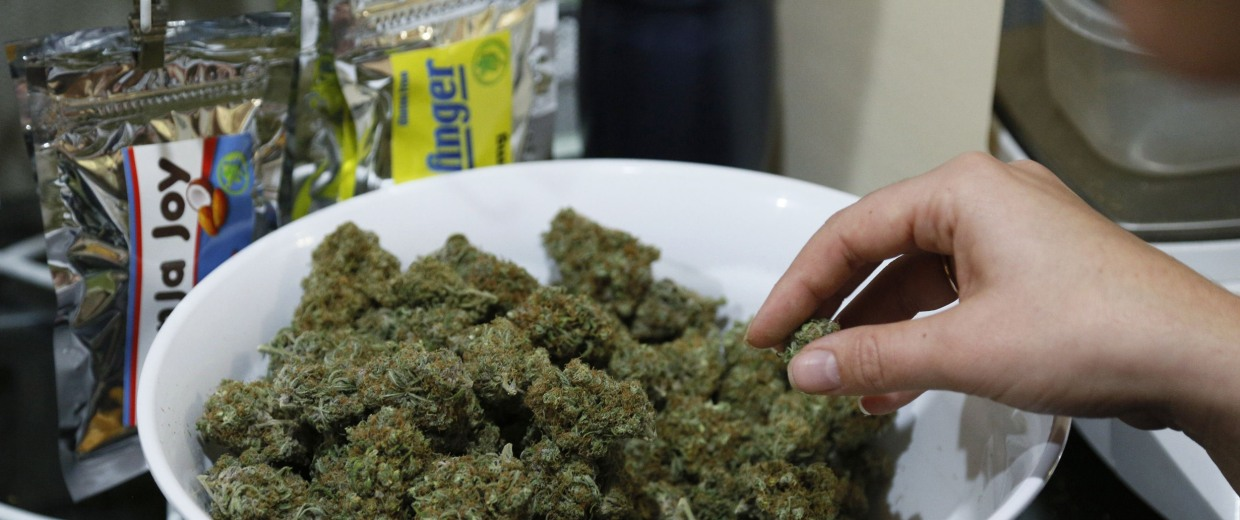 Image: Marijuana buds are prepped for sale