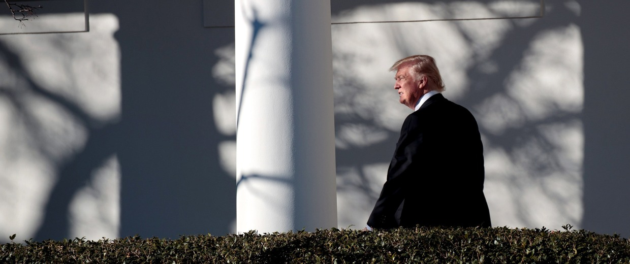 Image: Trump walks along the west wing colonnade on his way to the Oval Office