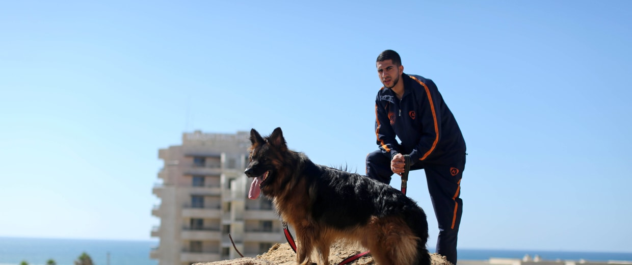 Dog show in Gaza City