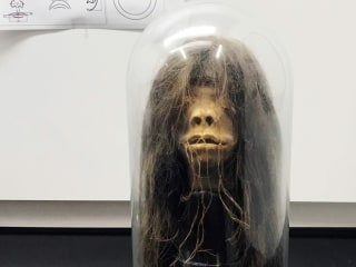 Ceremonial shrunken head returning to the Amazon after being displayed in U.S.
