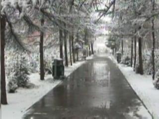Heavy Snow Hits Northwest China