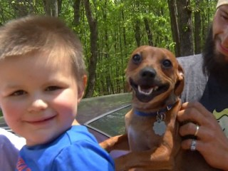 Hero Dog Helps Rescue Missing Toddler
