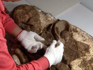 4,800-Year-Old Bones Capture Mom Cradling Child