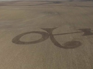 Farmer Mows 'Purple Grain' Tribute to Prince