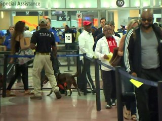 Long TSA Lines Dog Memorial Day Travelers