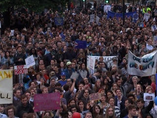 Hundreds Gather Outside Parliament to Protest 'Brexit' Vote